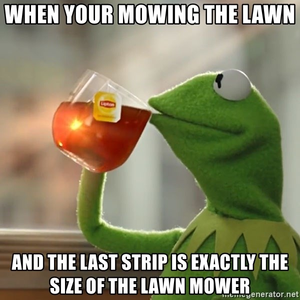 Kermit The Frog Drinking Tea - When your mowing the lawn  And the last strip is exactly the size of the lawn mower