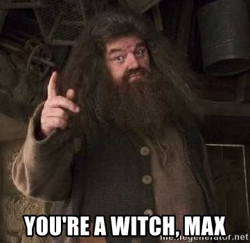 Hagrid - You're a witch, max