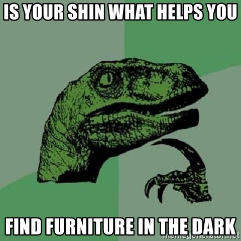 Philosoraptor - is your shin what helps you find furniture in the dark