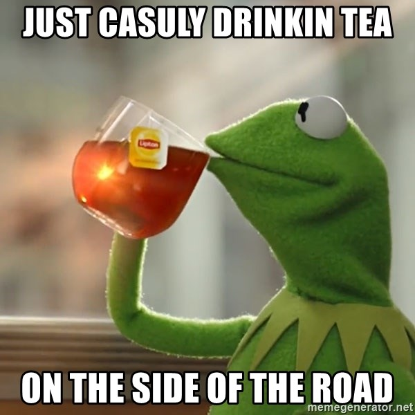 Kermit The Frog Drinking Tea - just casuly drinkin tea ON THE SIDE OF THE ROAD
