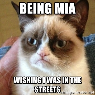 Grumpy Cat  - Being MIA Wishing i was in the streets