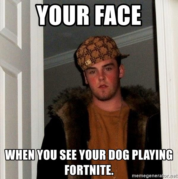 Scumbag Steve - Your face when you see your dog playing FortNite.