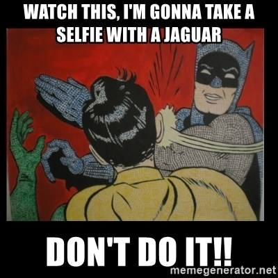 Batman Slappp - Watch this, I'm gonna take a selfie with a jaguar DON'T DO IT!!