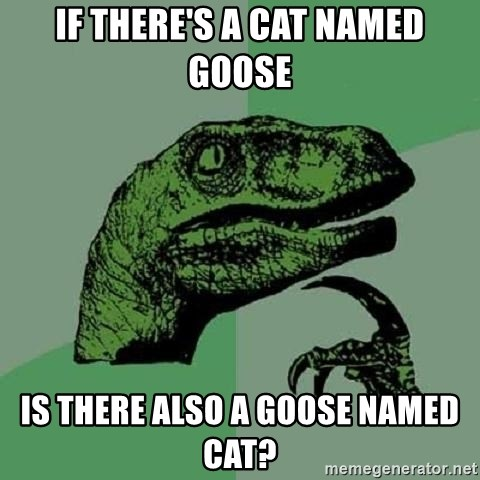 Philosoraptor - If there's a cat named Goose is there also a goose named Cat?