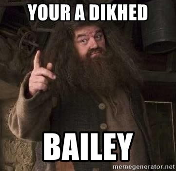 Hagrid - YOUR A DIKHED Bailey