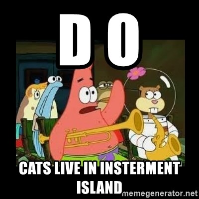 Patrick Star Instrument - D o  Cats live in insterment island