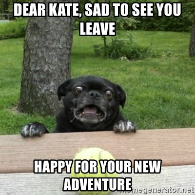 Ermahgerd Pug - Dear Kate, Sad to see you leave Happy for your new adventure