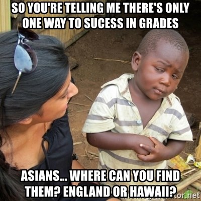 Skeptical 3rd World Kid - So you're telling me there's only one way to sucess in grades Asians... Where can you find them? England or Hawaii?