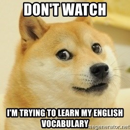 Dogeeeee - Don't watch I'm trying to learn my english vocabulary