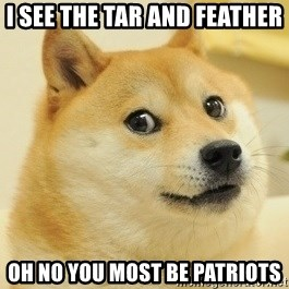 Dogeeeee - I see the tar and feather  oh no you most be Patriots