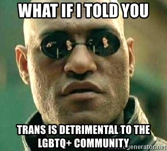 What if I told you / Matrix Morpheus - What if I told you trans is detrimental to the LGBTQ+ community