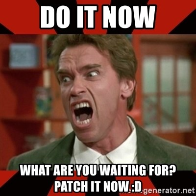 Arnold Schwarzenegger 1 - Do it now What are you waiting for? Patch it NOW :D