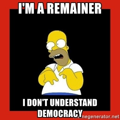 Homer retard - I'm a remainer I don't understand democracy