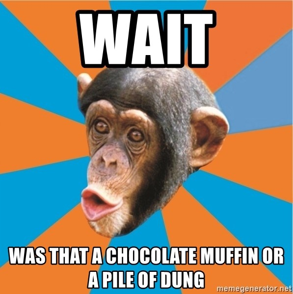 Stupid Monkey - Wait was that a chocolate muffin or a pile of dung
