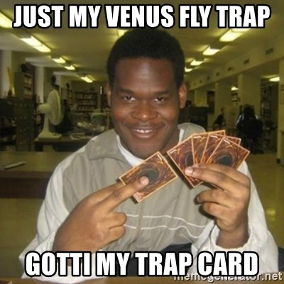 You just activated my trap card - Just My Venus Fly Trap  Gotti my trap card