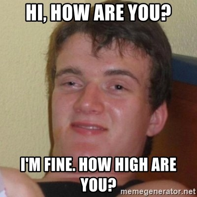 Really Stoned Guy - Hi, how are you? I'm fine. How high are you?