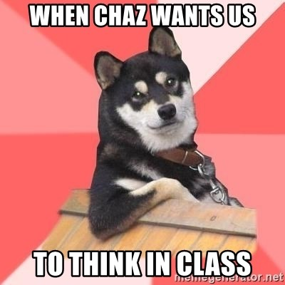 Cool Dog - When Chaz wants us to think in class