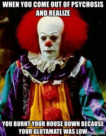 it clown stephen king - when you come out of psychosis and realize you burnt your house down because your glutamate was low