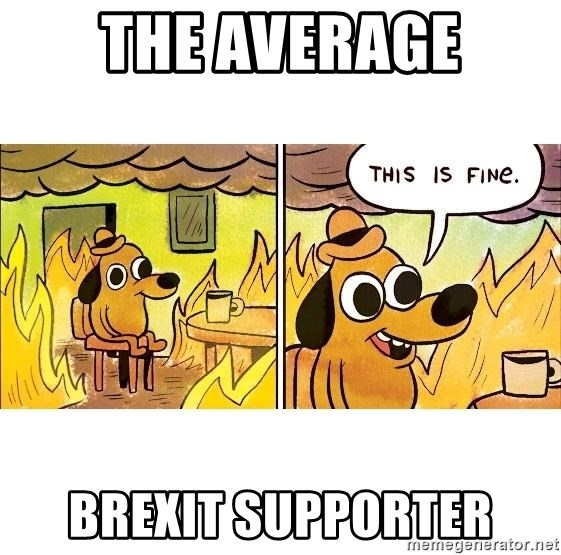This is fine - The Average Brexit supporter