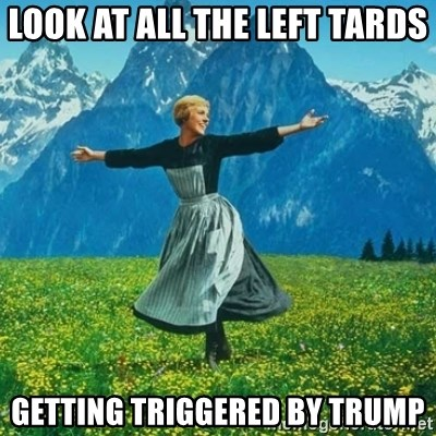 Look at All the Fucks I Give - look at all the left tards getting triggered by trump