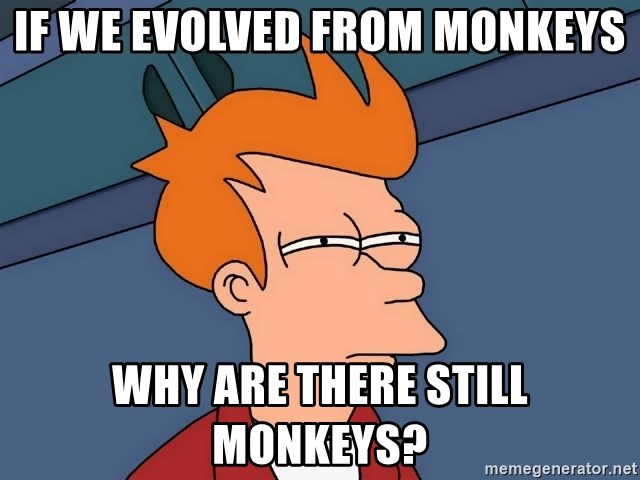 Futurama Fry - if we evolved from monkeys why are there still monkeys?