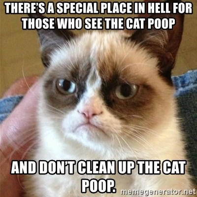 Grumpy Cat  - There's a special place in Hell for those who see the cat poop And don't clean up the cat poop.