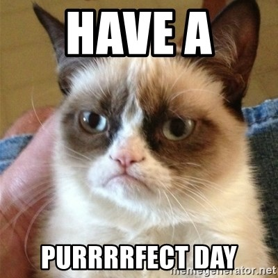 Grumpy Cat  - Have a  Purrrrfect Day