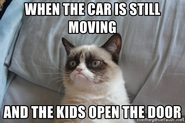 Grumpy cat good - When The Car Is Still Moving And The Kids Open The Door