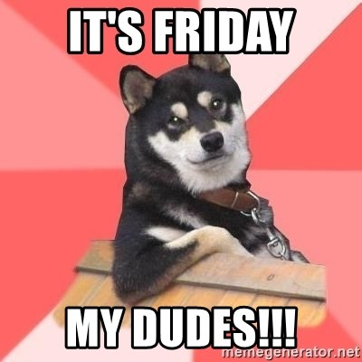 Cool Dog - It's Friday My dudes!!!