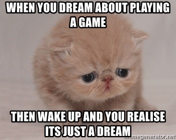 Super Sad Cat - when you dream about playing a game then wake up and you realise its just a dream