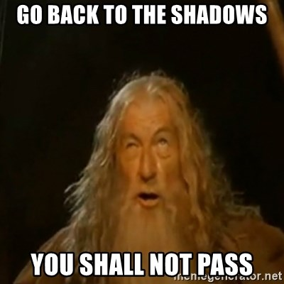 Gandalf You Shall Not Pass - Go back to the shadows You shall not pass