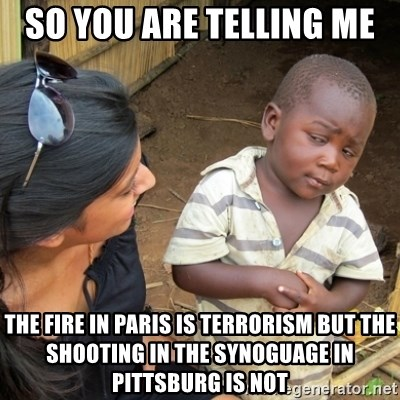 Skeptical 3rd World Kid - so you are telling me  the fire in paris is terrorism but the shooting in the synoguage in pittsburg is not