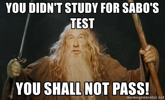 You shall not pass - You didn't study for Sabo's test You shall not pass!