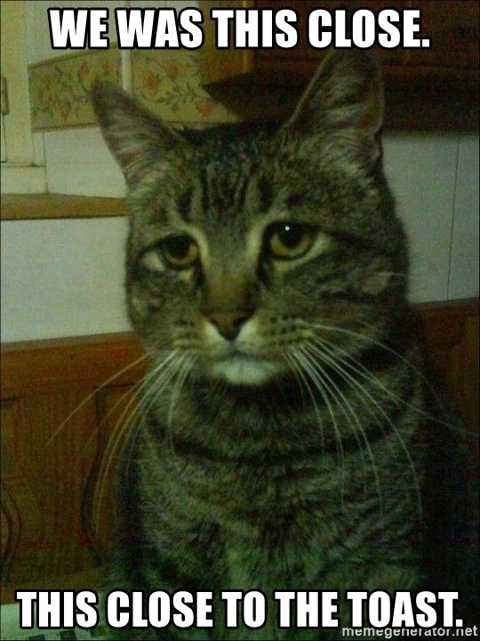 Depressed cat 2 - We was this close. This close to the toast.