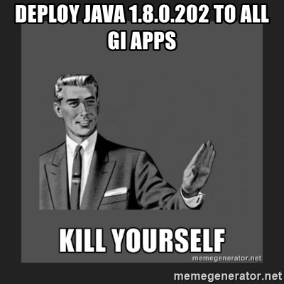 kill yourself guy - Deploy java 1.8.0.202 to all GI apps
