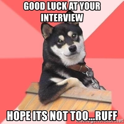 Cool Dog - Good luck at your interview hope its not too...ruff