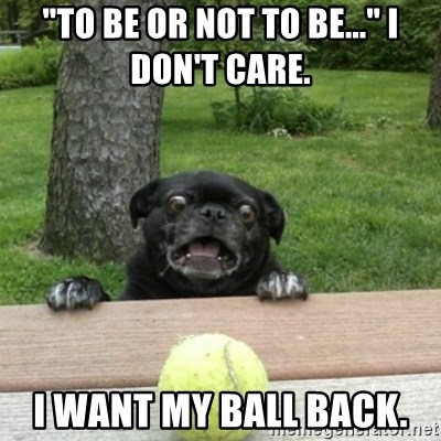 """Ermahgerd Pug - """"To be or not to be..."""" I don't care.  I want my ball back."""