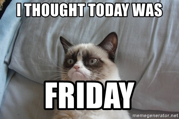 Grumpy cat good - i thought today was friday