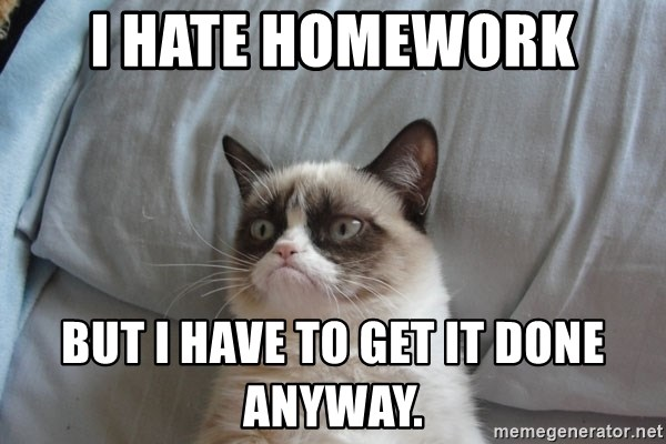 Grumpy cat good - I hate homework But I have to get it done anyway.