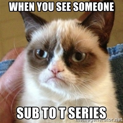 Grumpy Cat  - when you see someone  sub to t series