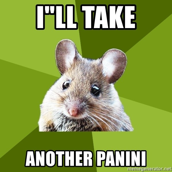 """Prospective Museum Professional Mouse - I""""ll take another panini"""