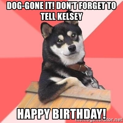 Cool Dog - dog-gone it! don't forget to tell kelsey happy birthday!