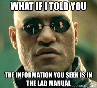 What if I told you / Matrix Morpheus - What if I told you The information you seek is in the lab manual