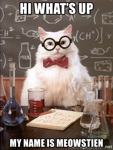 Chemistry Cat - Hi what's up My name is Meowstien