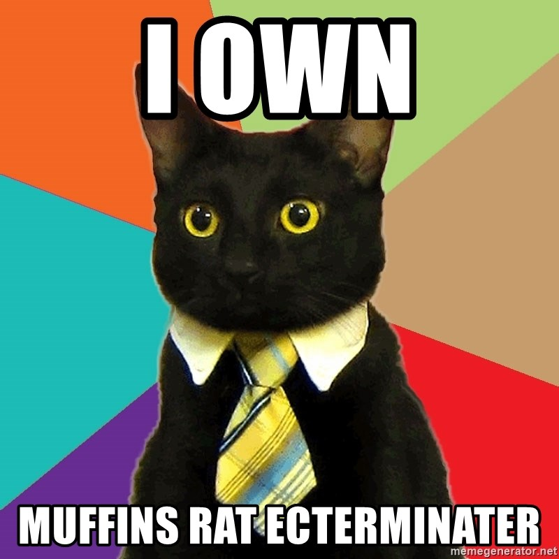 Business Cat - I own Muffins rat ecterminater