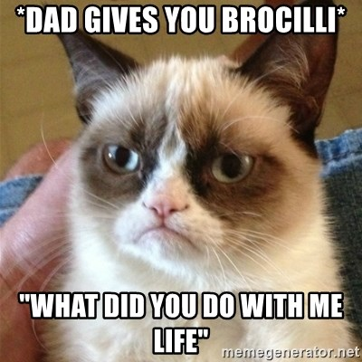 """Grumpy Cat  - *dad gives you brocilli* """"what did you do with me life"""""""