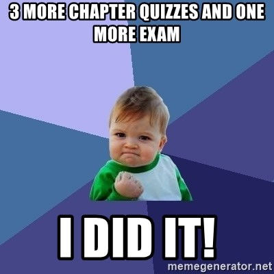 Success Kid - 3 more chapter quizzes and one more exam I did it!