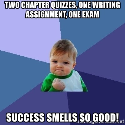 Success Kid - two chapter quizzes, one writing assignment, one exam success smells so good!