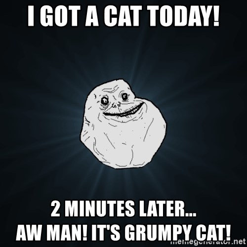 Forever Alone - i got a cat today! 2 minutes later...                         aw man! it's grumpy cat!