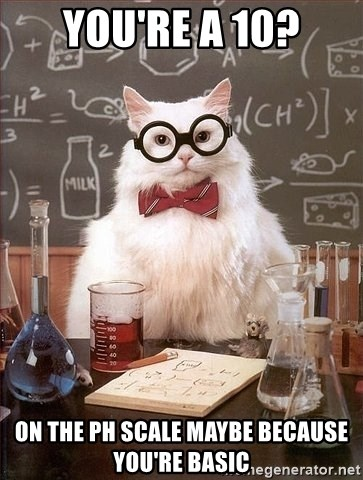 Chemistry Cat - You're a 10? On the ph scale maybe because you're basic